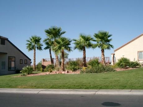 Foreclosures in Mesquite NV