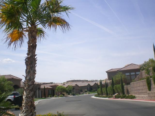 Southern Nevada Realtors